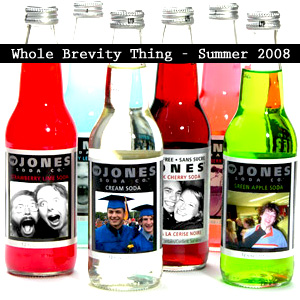 Whole Brevity Thing - Summer 2008 Mixtape